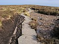 Offa's Dyke Path - geograph.org.uk - 1728423.jpg