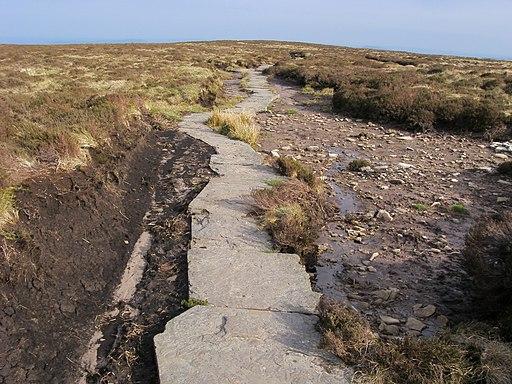 Offa's Dyke Path - geograph.org.uk - 1728423