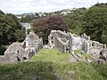 Okehampton Castle - geograph.org.uk - 31510.jpg