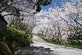 Okocho Yahata, Nankoku, Kochi Prefecture 783-0044, Japan - panoramio.jpg