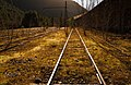 Old Rails Field (136199035).jpeg