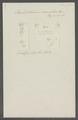 Onchobothrium coronatum - - Print - Iconographia Zoologica - Special Collections University of Amsterdam - UBAINV0274 105 17 0002.tif