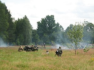 Anti-partisan operations in World War II - Historical recreation of battle of Osuchy (one of the largest battle of the Polish partisans); summer 2007