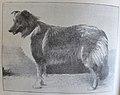 Ottův slovník naučný - obrázek č. 3091.JPG
