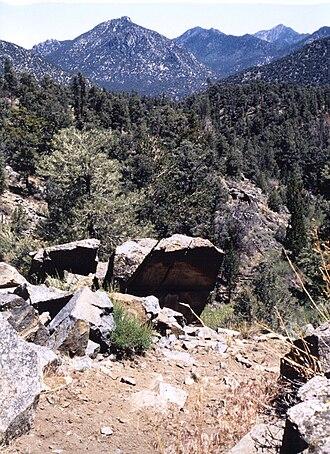 Owens Peak Wilderness - Owens Peak