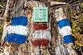 Pörtschach Bannwaldweg 8 Wegnummer und Wegmarkierungen 25082019 7077.jpg
