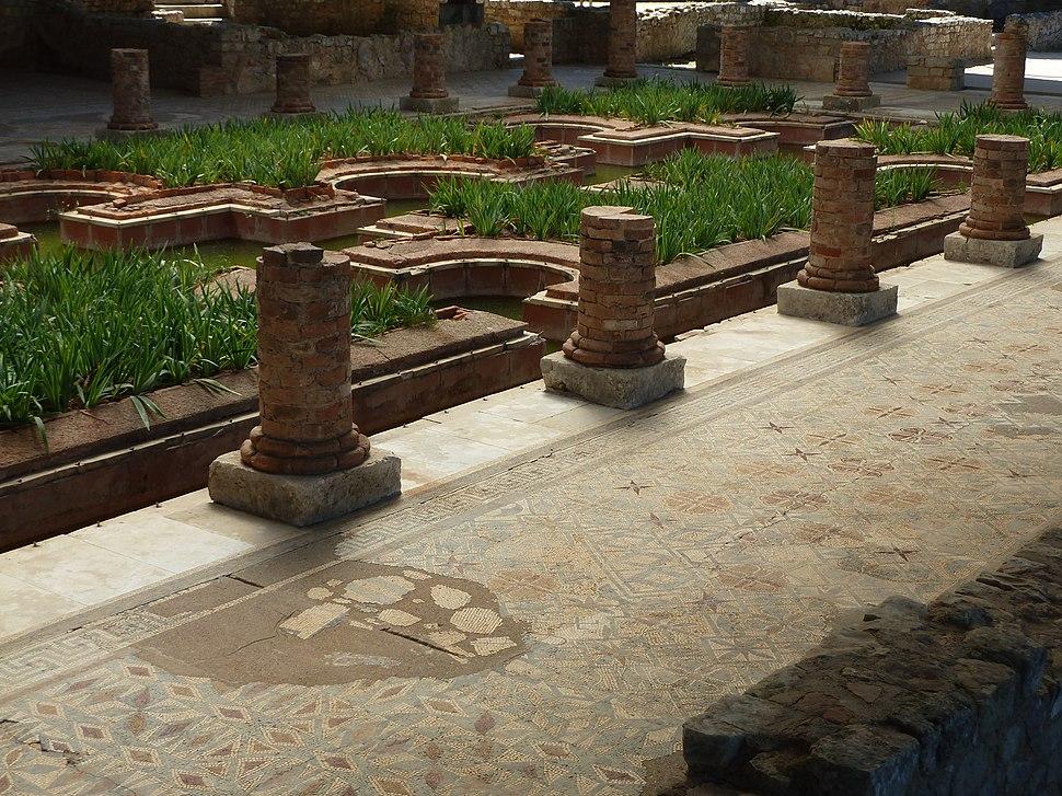 P1080474 Mosaico Conimbriga (Condeixa-a-Nova)