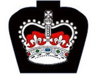 Navy League Cadet Corps (Canada) - Image: P1 Badge