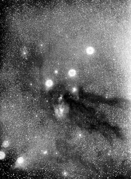 PSM V58 D423 Rifts in the milky way photographed by barnard