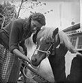Paardemarkt in Beusichem Meisje met paard, Bestanddeelnr 912-6032.jpg