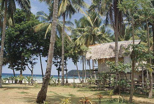 Palawan - Tropical Hut