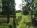Pant-y-Goitre, parkland and park entrance - geograph.org.uk - 1432474.jpg