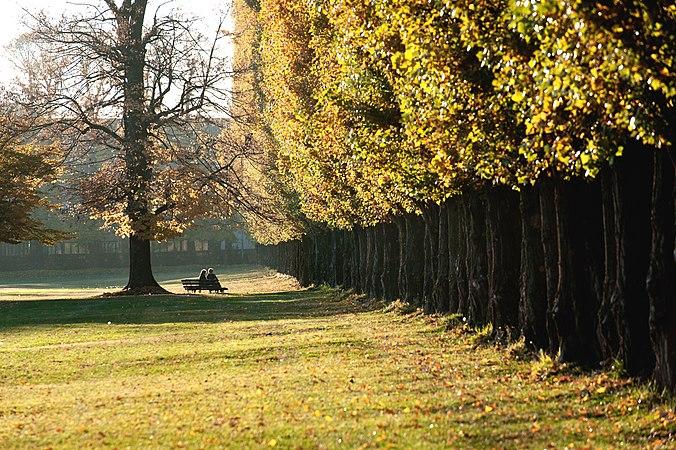 Parco Borromeo.jpg