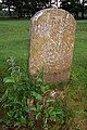 Parish boundary marker, Longwater Lawn, New Forest - geograph.org.uk - 493962.jpg