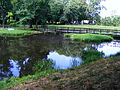 Park in Klimkówka bk10.JPG