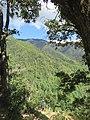 Paro Taktsang, Taktsang Palphug Monastery, Tiger's Nest -views from the trekking path- during LGFC - Bhutan 2019 (310).jpg