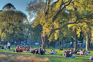 Parque Centenario - Visitors relax under Buenos Aires' characteristic tipa trees.
