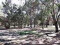 Parque del rio7.jpg