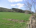 Pasture field - geograph.org.uk - 399179.jpg