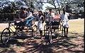 Pedal rickshaws kochi 1960.jpg