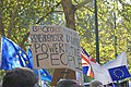 People's Vote March For The Future (30596428987).jpg