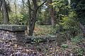 Perthes-en-Gatinais - Ru du Rebais - 2012-11-14 - IMG 8196.jpg