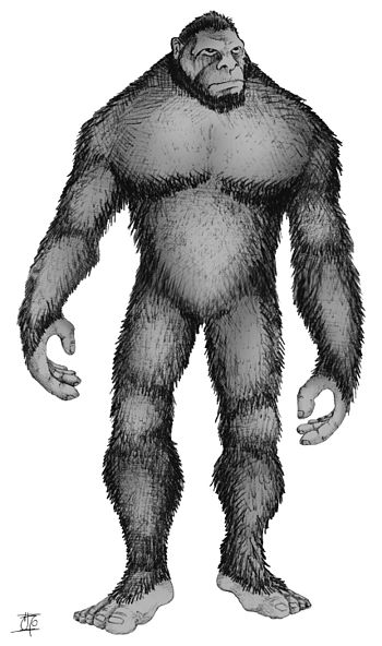 Bigfoot, as imagined by a Canadian artist.