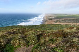 Point Reyes Lighthouse Trail December 2016 004.jpg