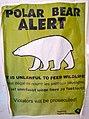 Polar bear alert (6357573595).jpg