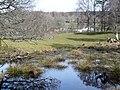 Pond near Scotsburn House - geograph.org.uk - 1803362.jpg