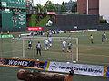 Portland Timbers FC.jpg
