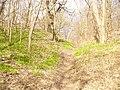 Potsdam - Koenigswall - geo.hlipp.de - 34701.jpg