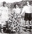 PreviaAlianzaColoColo-24-11-1935.png