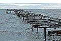 Punta Arenas, 14.jpg