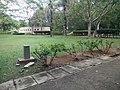 Putrajaya's Botanical Garden 34.jpg