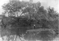 Queensland State Archives 3161 Fishing at Glencoe c 1910.png