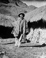 Quichuamestis. Sydamerika. Peru - SMVK - 002392.tif