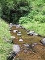 Quiet stream between the falls - July 2012 - panoramio.jpg
