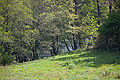 Río Tambre Vilarromarís, Oroso-3-1.jpg