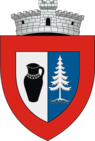 ROU SV Marginea CoA.png