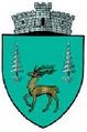 ROU SV Moldovita CoA.png