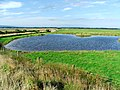 RSPB reserve at Nigg Bay - geograph.org.uk - 248126.jpg