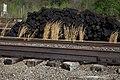 Railyard Scene (9132868914).jpg