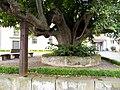 Ransbach-Gerichtsplatz mit Linde (Steineinfassung und Holzstützen) im Vorfeld der Kirche-20072012.JPG