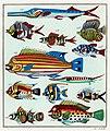Rawpixel original lithographs by rawpixel-com 00038.jpg