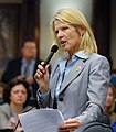 Representative Debbie Mayfield debates on the House floor.jpg