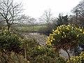 Rheidol Valley on Christmas Day - geograph.org.uk - 298302.jpg