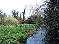 River Allen, Wimborne St Giles - geograph.org.uk - 368932.jpg