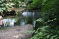 River Brent - geograph.org.uk - 898066.jpg