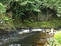 River Dart below Sharrah Pool - geograph.org.uk - 842943.jpg